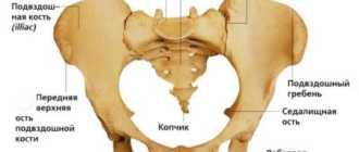 Крестцово-подвздошный сустав болит: симптомы заболеваний и способы лечения